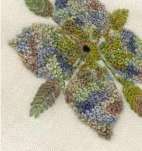 Cottage Garden Button flower blues